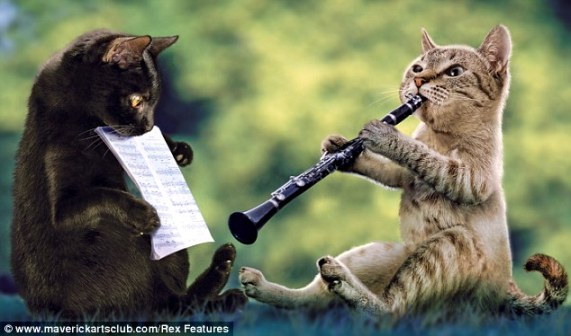 If you can teach your pets to play swing music for you to help out, by all means go for it.